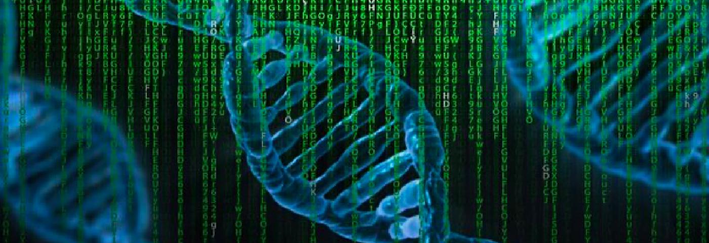 L'empreinte de la génétique sur la personnalité
