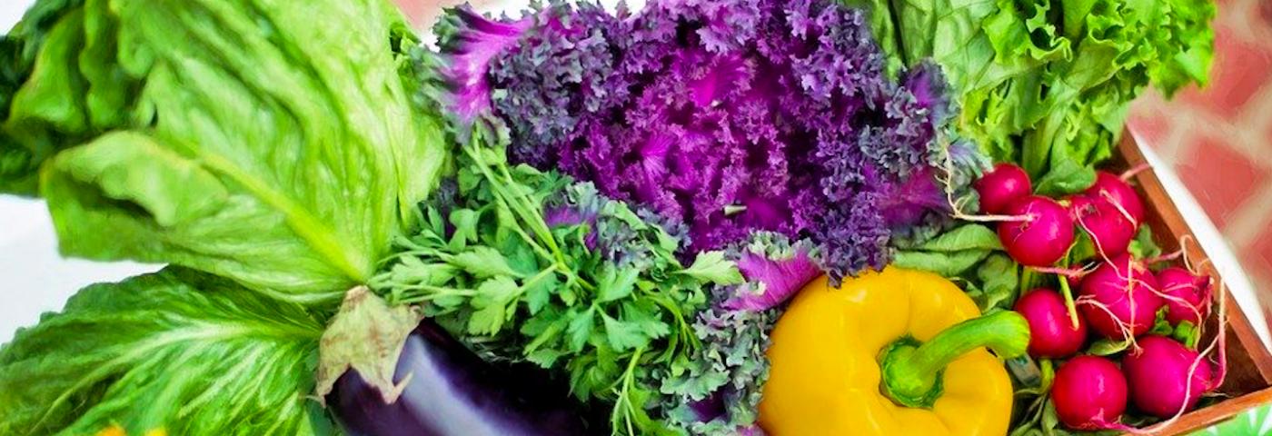 Combattre le vieillissement par la nutrition