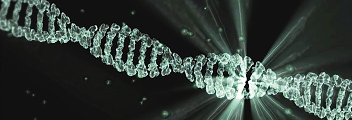 Tests génétiques, nouvelle mode ou outil intéressant ?