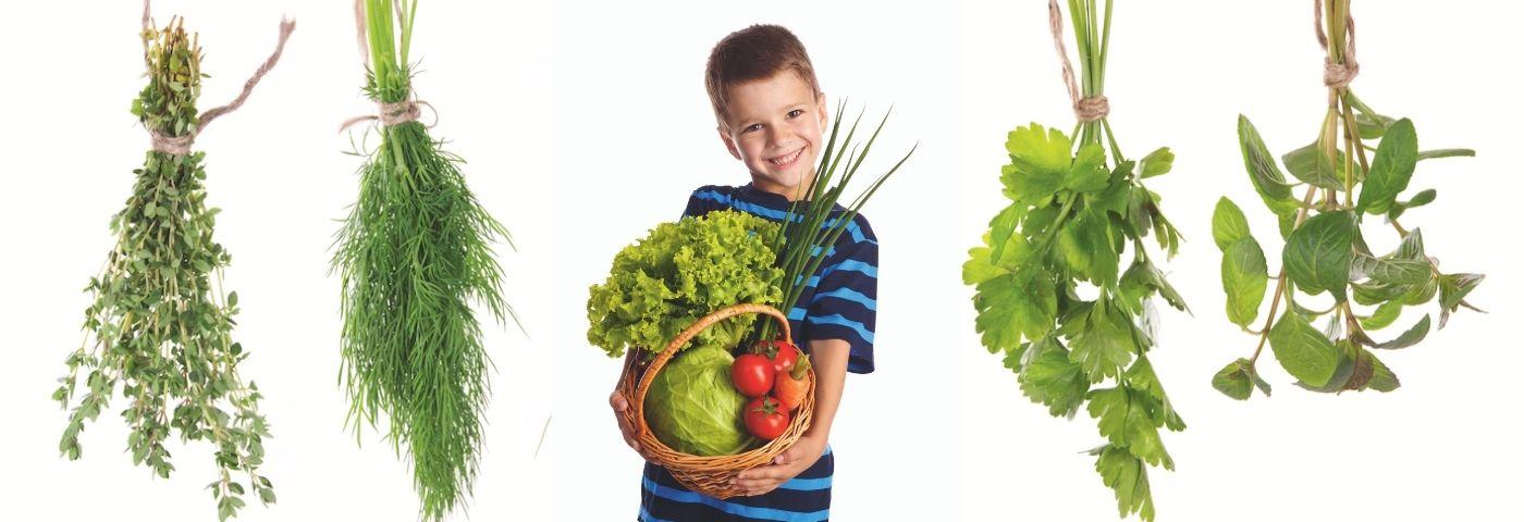 Les saveurs du jardin – Les petits cuistots – apprendre à bien manger en s'amusant!
