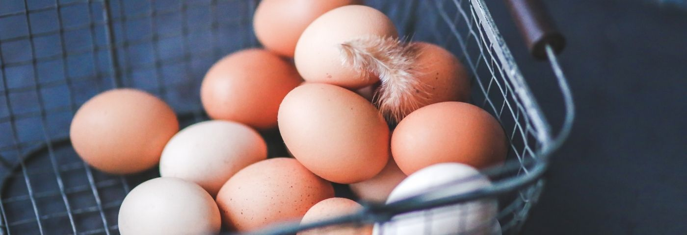 Les cocos, si on cassait des œufs pour en faire des mets savoureux?!